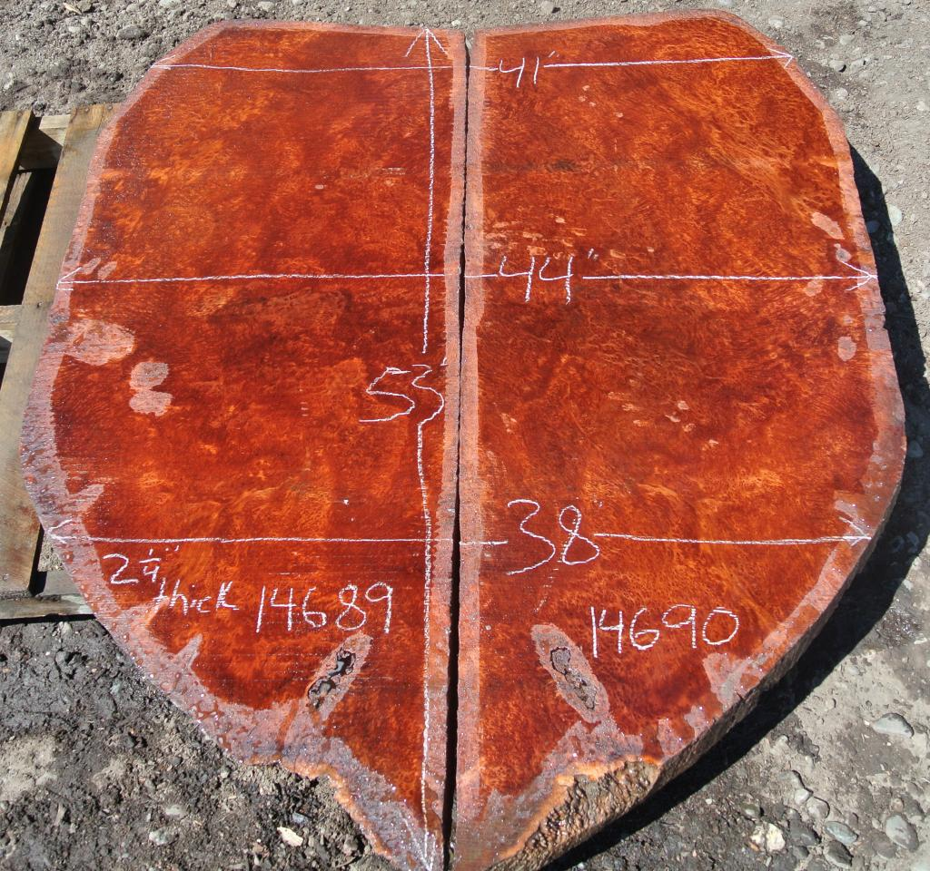 Wood Slabs Salvaging And Reclaiming Urban Woods