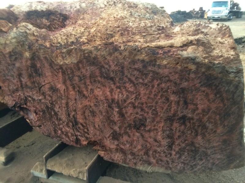 Rare Beautiful Live Edge Lace Redwood Burl Slabs
