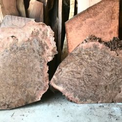 Walnut Burl Slabs