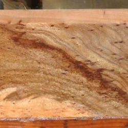 Red Elm Burl Billets
