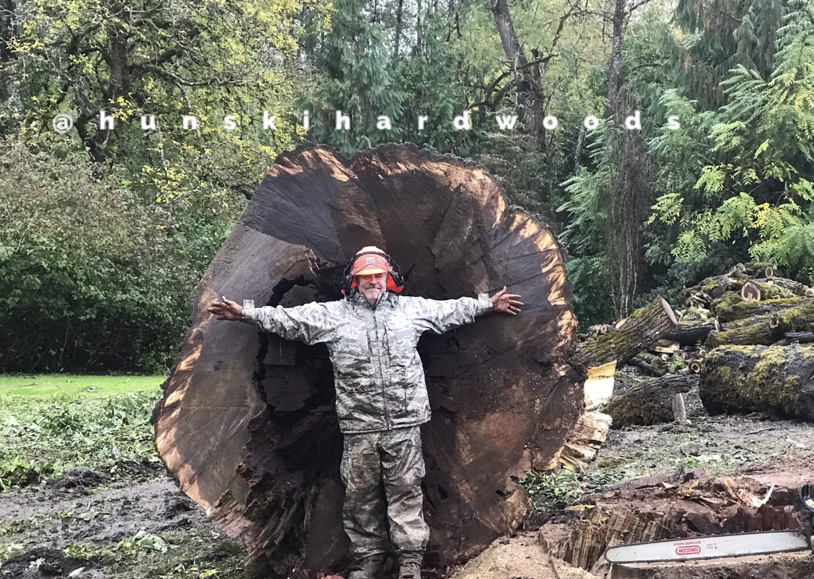 Hunski Salvages the Worlds Largest Straight Claro Black Walnut Tree
