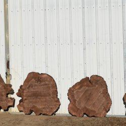 Round Cross Cut Cookie Slabs
