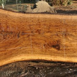 Hunski Exhibition Super Figured Claro Walnut Slabs