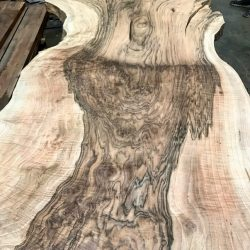 English Walnut Slabs
