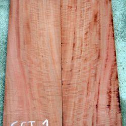 Figured Red Gum Eucalyptus