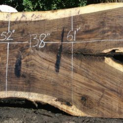 Bastogne Walnut Slabs
