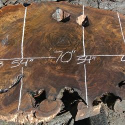 Round Cross Cut Slabs