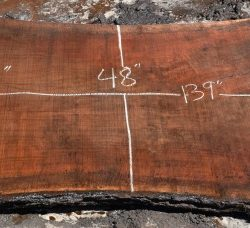 "Large Walnut Hardwood Slabs 40""x10ft+"