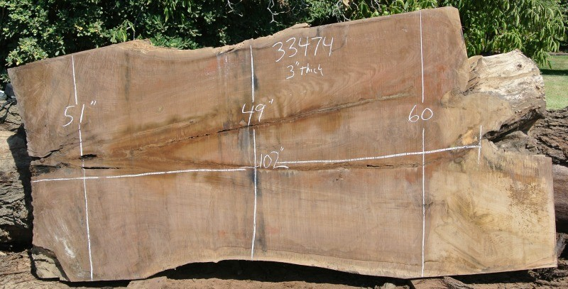 33474 Huge Grafted English Black Walnut Slab 102 Quot X60 Quot 49