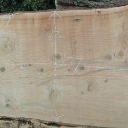 Deodar Cedar Slabs