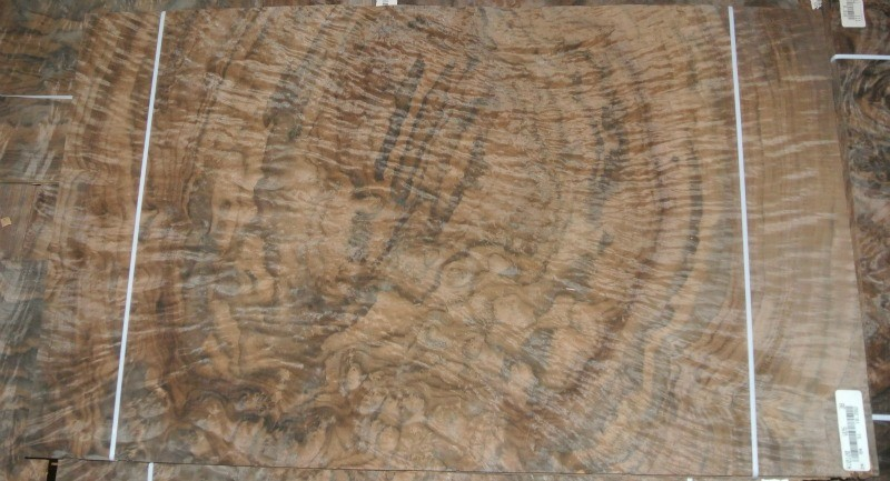Fiddleback Walnut Veneer