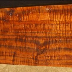 Claro Walnut 2pc Gunstock Blanks